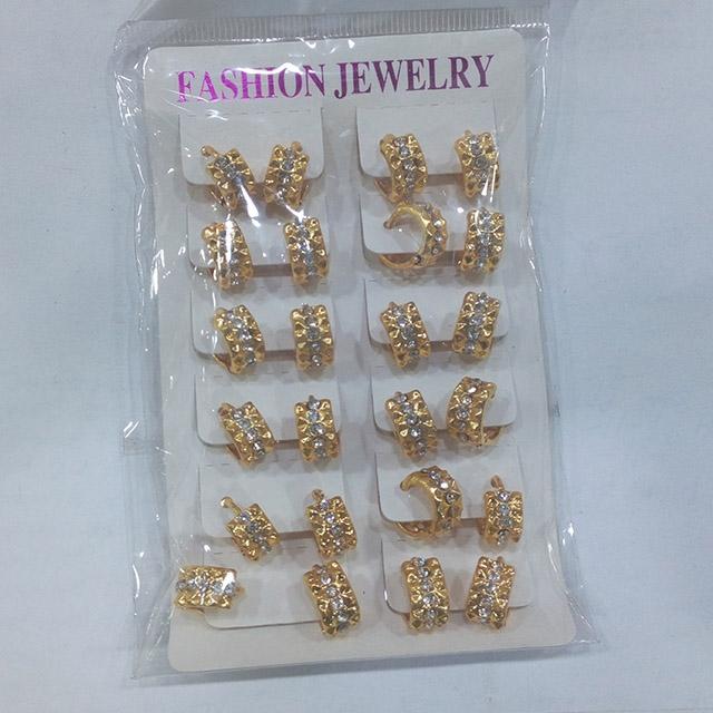 Women's fashion earrings - Dozen