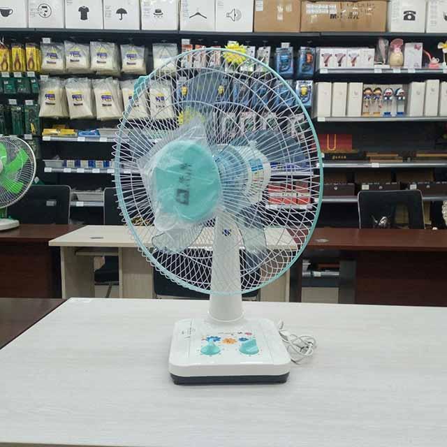 Wanlong-Electric Fan