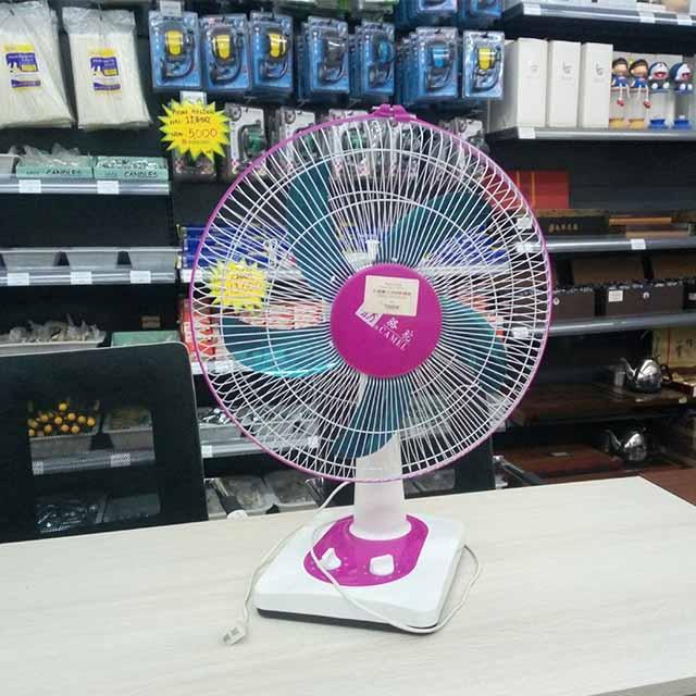 Wanlong - Electric Fan big