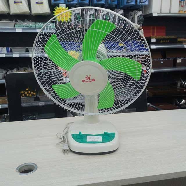 Wanlong-Electric Fan Small